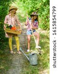 Small photo of Kids girls with tools for gardening. Gardening basics. Gardening teaching life cycle process. Summer at countryside. Gardens great place cultivate meaningful and fun learning experience for children.