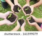 hands holding sapling in soil... | Shutterstock . vector #161599079