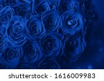 Bouquet Of Beautiful Blue Rose...