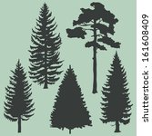 vector set of coniferous trees... | Shutterstock .eps vector #161608409