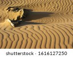 sand ripples and jagged stones | Shutterstock . vector #1616127250