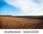 green grass under blue sky | Shutterstock . vector #161613233