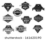 set of labels and banners in... | Shutterstock .eps vector #161620190