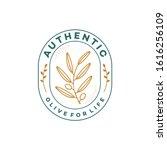 illustration olive tree logo... | Shutterstock .eps vector #1616256109