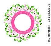 microgreens hong vit radish.... | Shutterstock .eps vector #1616833906