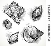 set of sketches of different...   Shutterstock .eps vector #161684963