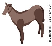 mammal horse icon. isometric of ... | Shutterstock .eps vector #1617174109