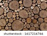 round wood stem pattern texture ...   Shutterstock . vector #1617216766