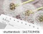 Calendar May With Dandelion...