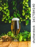 Small photo of Beer and hop plant. Still life with beer and hop plant in retro style. Glass of cold foamy beer brown bottle of beer and hop on a dark background.