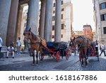 23 June 2014  Rome  Italy  ...