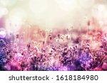 beautiful grass flower meadow...   Shutterstock . vector #1618184980