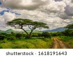 Landscape Pictures From The...