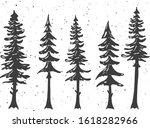 Vector Illustration Of Cypress...