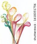 art abstract flowers .hand...   Shutterstock . vector #1618351756