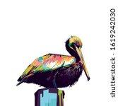 Beach Animal. Pelican Colorful...