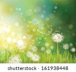 vector of spring background... | Shutterstock .eps vector #161938448