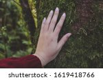 Hand Of Environmentalist...