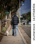 Man in ski jacket walking white poodle down sidwalk. Image is shot from behind with man and dog walking away from camera