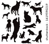 vector silhouette of collection ...   Shutterstock .eps vector #1619590219