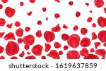 red rose petals isolated on... | Shutterstock . vector #1619637859