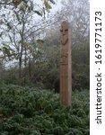Pagan Wood Sculpture On Autumn...