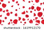 red rose petals isolated on... | Shutterstock . vector #1619912170