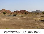 Small photo of OMAN - Dust Bowl Nature and Vegetation