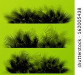 palm tree silhouettes wild... | Shutterstock .eps vector #162005438