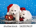 Christmas Puppies White...