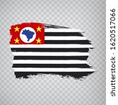 flag of sao paulo from brush...