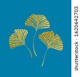vector illustration of ginkgo... | Shutterstock .eps vector #1620642703