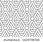 pattern with thin blured... | Shutterstock .eps vector #1620738760