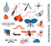 doodle insects big set. beetle  ... | Shutterstock .eps vector #1620949186