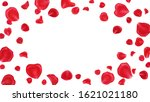 red rose petals frame isolated... | Shutterstock . vector #1621021180