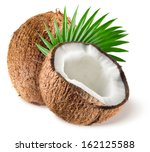coconuts with leaf on white... | Shutterstock . vector #162125588