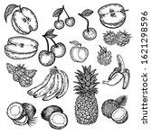 vector hand drawn set of fruits ... | Shutterstock .eps vector #1621298596
