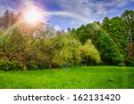 spring landscape with trees near valley and colorful forest on hillside under blue sky with clouds - stock photo