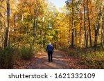 A Walk In The Ott Preserve Park ...