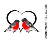 a couple of cute bullfinches ... | Shutterstock .eps vector #162169688