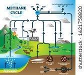 Methane Cycle Diagram  Global...