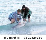 Small photo of St. Pete Beach, Florida, January 16th, 2020: Two fishermen subdue a Sandbar Shark ( Carcharhinus plumbeus) in order to remove the hook and release it back into the Gulf of Mexico at St. Pete Beach, Fl