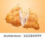 delicious crispy fired chicken... | Shutterstock .eps vector #1622843599