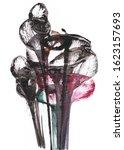 art abstract flowers .hand...   Shutterstock . vector #1623157693