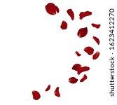 falling red rose petals... | Shutterstock .eps vector #1623412270