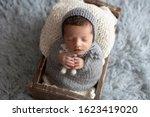 newborn baby  15 days old ... | Shutterstock . vector #1623419020