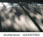 Bokeh From Tree Shadows Throug...
