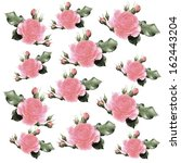 seamless pattern with... | Shutterstock . vector #162443204
