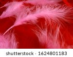 Background Of Red And Pink...