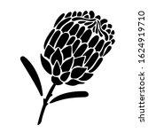 proteus flower silhouette.... | Shutterstock .eps vector #1624919710